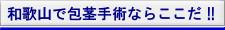和歌山市で包茎手術ならここだ!!